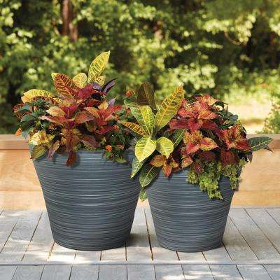 12 in. and 16 in. Resin Cabana Planter Combo Pack (Set of 2)