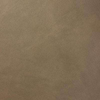 13 in. x 19 in. #SU118 Canyon Road Suede Specialty Paint Chip Sample