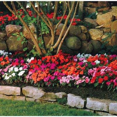 Grower's Choice Garden Potting Soil Sunpatien New Guinea Impatien 1.25 cu. ft. Flowering Mix