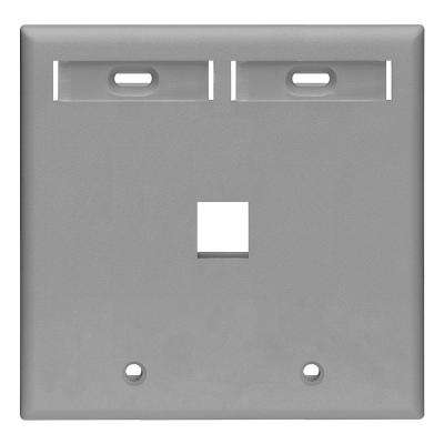 2-Gang Quickport Standard Size 1-Port Wallplate with ID Windows, Gray