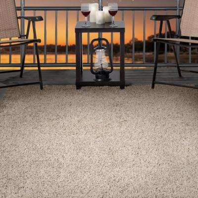 Shag Taupe 5 ft. x 8 ft. Indoor/Outdoor Area Rug