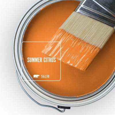S-G-270 Summer Citrus Paint