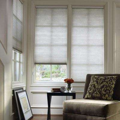 Light Filtering Honeycomb Shade