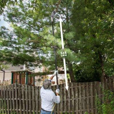 8 in. 6.5 Amp Multi-Angle Telescopic Electric Pole Saw, Gray