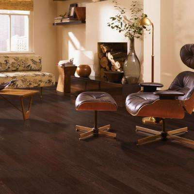 Raymore Oak Chocolate 3/4 in. Thick x 3-1/4 in. Wide x Random Length Solid Hardwood Flooring (17.6 sq. ft. / case)