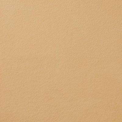 13 in. x 19 in. #SU133 Touching Stone Suede Specialty Paint Chip Sample