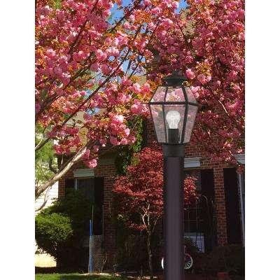 Westover Outdoor Black Post Head Lantern