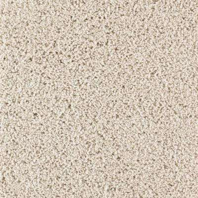 Carpet Sample - Ashcraft I - Color Beachcomber Texture 8 in. x 8 in.