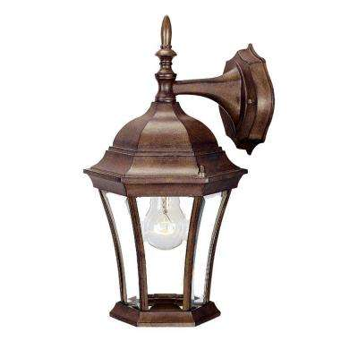Brynmawr Collection 1-Light Burled Walnut Outdoor Wall-Mount Light Fixture