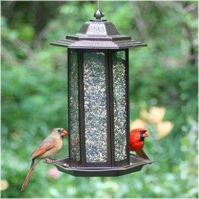 Tall Tulip Garden Lantern Hanging Bird Feeder - 6 lb. Capacity