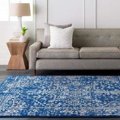 Demeter Blue 8 ft. x 10 ft. Indoor Area Rug