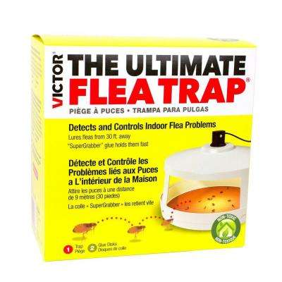 Ultimate Flea Trap