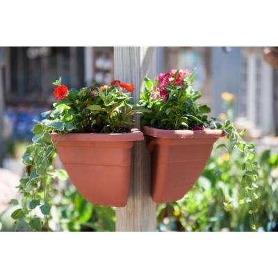Plant Around Terra Cotta