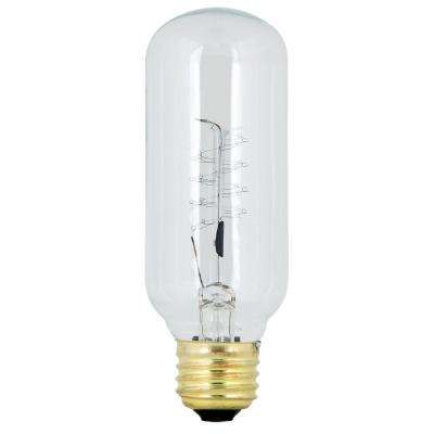 Original Vintage Style 60-Watt Incandescent T14 Light Bulb (24-Pack)