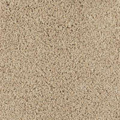 Carpet Sample - Ashcraft I - Color Corkboard Texture 8 in. x 8 in.