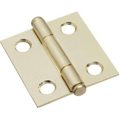 1-1/2 in. Cabinet Hinge