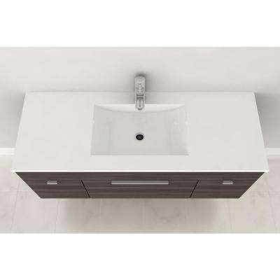 Textures Collection 48 in. W Vanity in Driftwood with Acrylic Sink in White