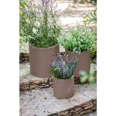 Round Beige Rattan Resin Planters (Set of 3)