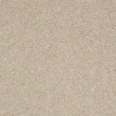 Carpet Sample - Brave Soul II 12 - In Color Clay Bisque 8 in. x 8 in.