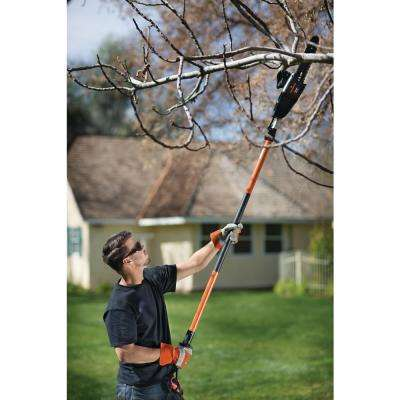 Ranger 10 in. 8 Amp Electric Telescoping 2-in-1 Pole Saw/Chainsaw Combo