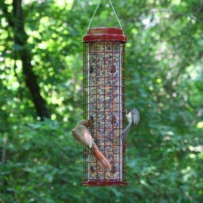 Easy Feeder Squirrel Proof Bird Feeder - 4 lb. Capacity