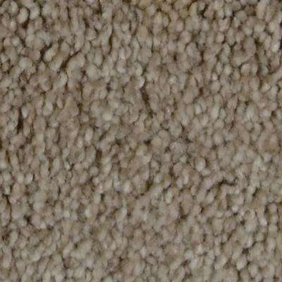 Carpet Sample - Harvest II - Color Maxwell Texture 8 in. x 8 in.