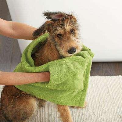 Company Cotton Dog Towel