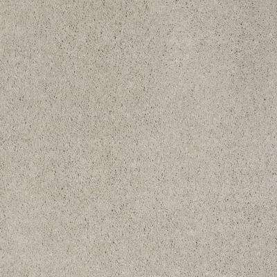 Carpet Sample - Miraculous II - Color Heather Texture 8 in. x 8 in.