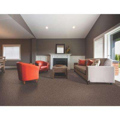 Americana - Color Sedona Texture 12 ft. Carpet