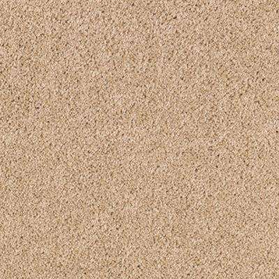 Carpet Sample - Ashcraft II - Color Toasted Tan Texture 8 in. x 8 in.