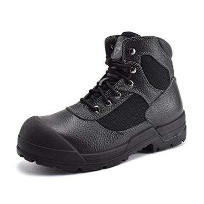 Men's 6 in. Steel Toe Work Boot