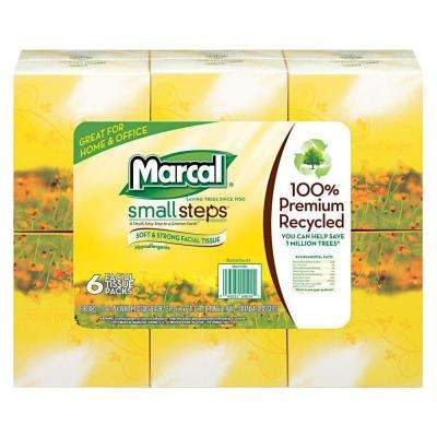 100% Recycled Facial Tissue 2-Ply (80-Count)