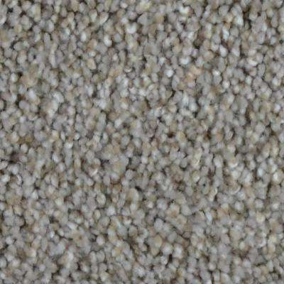 Reign - Color Highland Texture 12 ft. Carpet (1080 sq. ft./Roll)