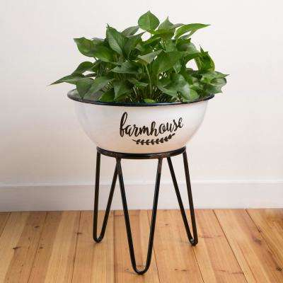 14.17 in. L x 14.17 in. W x 16 in. H Enamel Coated Metal Farmhouse Plant Stand