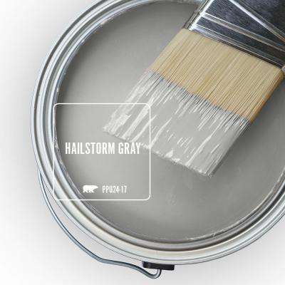 PPU24-17 Hailstorm Gray Paint