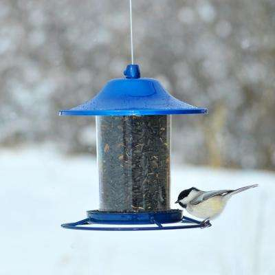 Blue Sparkle Panorama Hanging Bird Feeder - 2 lb. Capacity