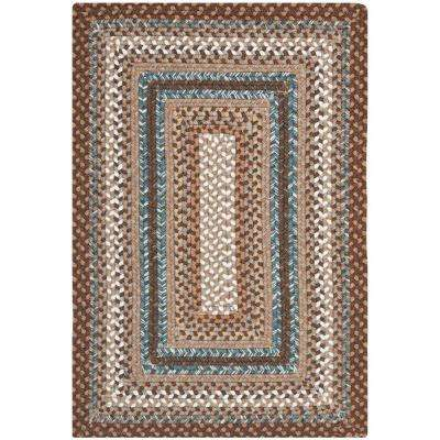 Braided Brown/Multi 4 ft. x 6 ft. Area Rug