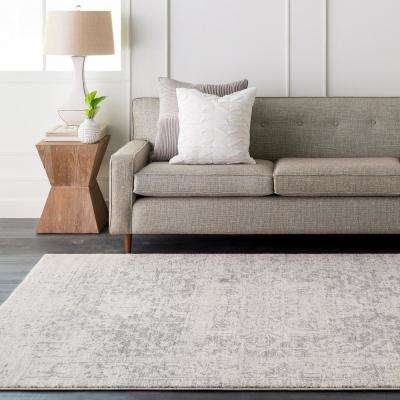 Demeter Gray 8 ft. x 10 ft. Indoor Area Rug