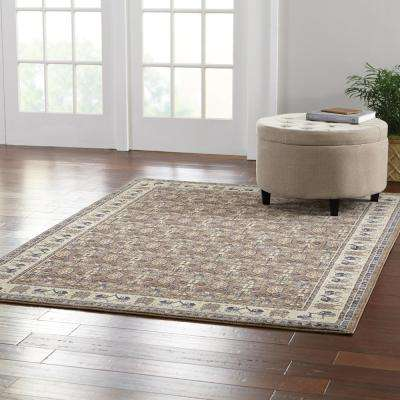 Gianna Brown 2 ft. x 3 ft. Area Rug
