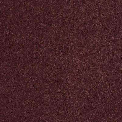 Carpet Sample - Miraculous II - Color Salsa Texture 8 in. x 8 in.