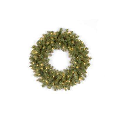 26 in. Pre-Lit LED Downswept Douglas Wreath with Clear Lights