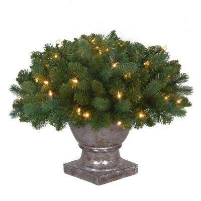 20 in. Pre-Lit Fairwood Potted Tree with Clear Lights
