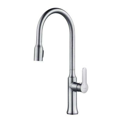 Nola Single-Handle Concealed Pull-Down Kitchen Faucet with Dual-Function Sprayer in Chrome