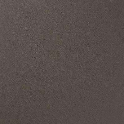 13 in. x 19 in. #RR122 Somerset Moss River Rock Specialty Paint Chip Sample