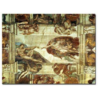24 in. x 32 in. The Creation of Adam Canvas Art