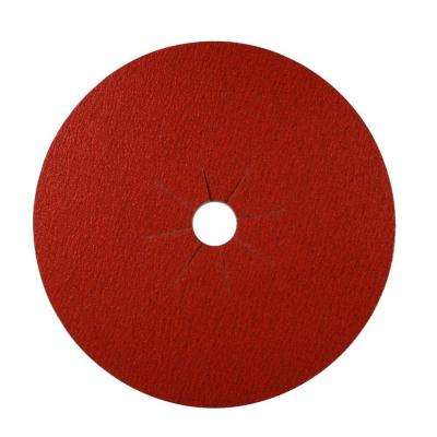 16 in. x 2 in. 12-Grit Sanding Disc (5-Pack)