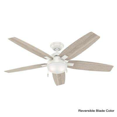 Antero 54 in. LED Indoor Fresh White Ceiling Fan with Light