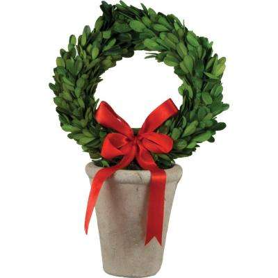 8 in. dia. Preserved Boxwood Wreath in White Terracotta Pot