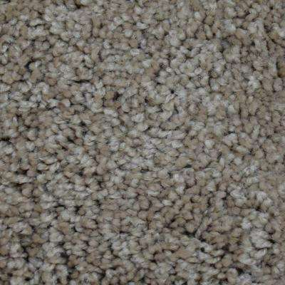 Carpet Sample - Tyus I - Color Langley Texture 8 in. x 8 in.