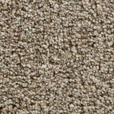 Carpet Sample - Greenlee II - In Color Clay Monolith 8 in. x 8 in.